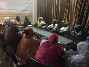 Réunion de concertation et réflexion avec 15 coopératives féminines du Brakna sur le projet de lutte